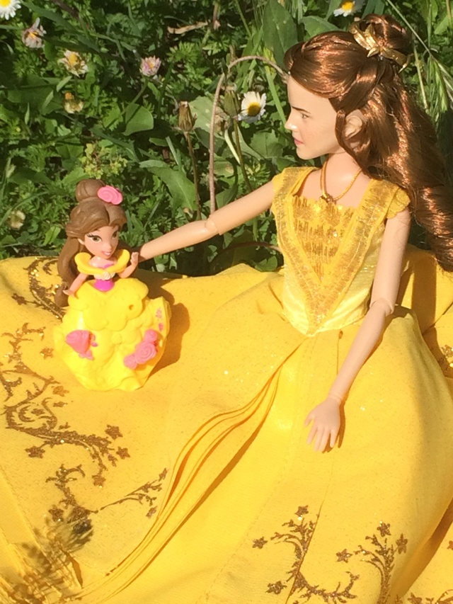 Ma collection des poupées des films de DISNEY - Page 7 Img_1521