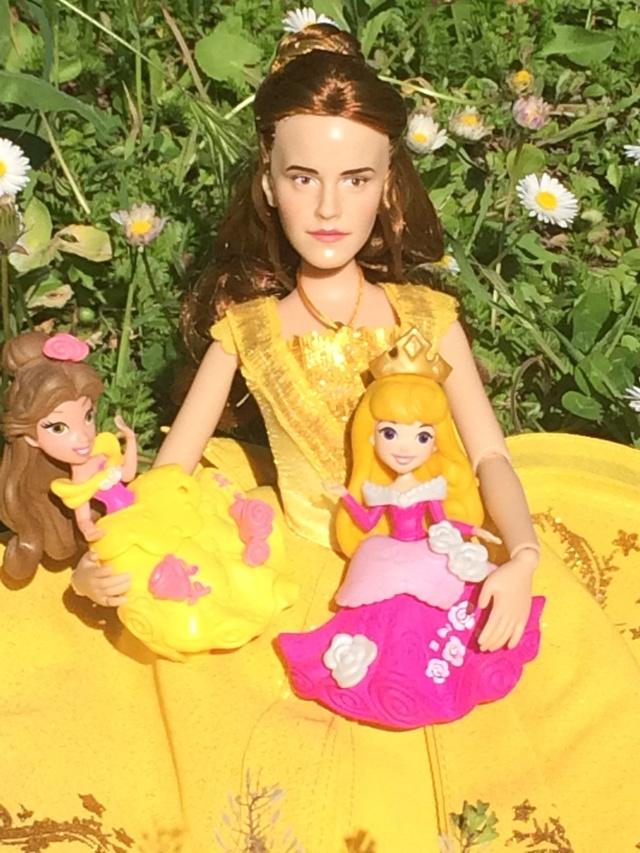 Ma collection des poupées des films de DISNEY - Page 7 Img_1611