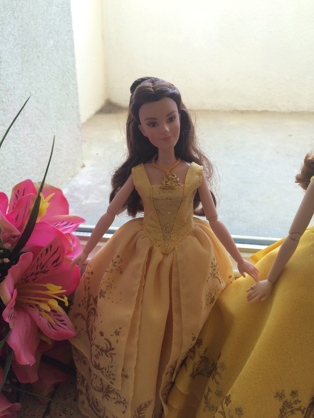 Ma collection des poupées des films de DISNEY - Page 7 Img_2015