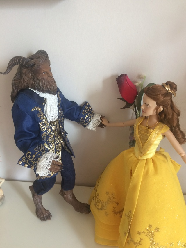 Ma collection des poupées des films de DISNEY - Page 7 Img_2716