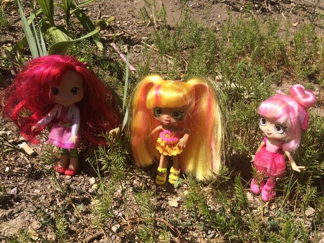 Dolls en Promenade  Img_3425