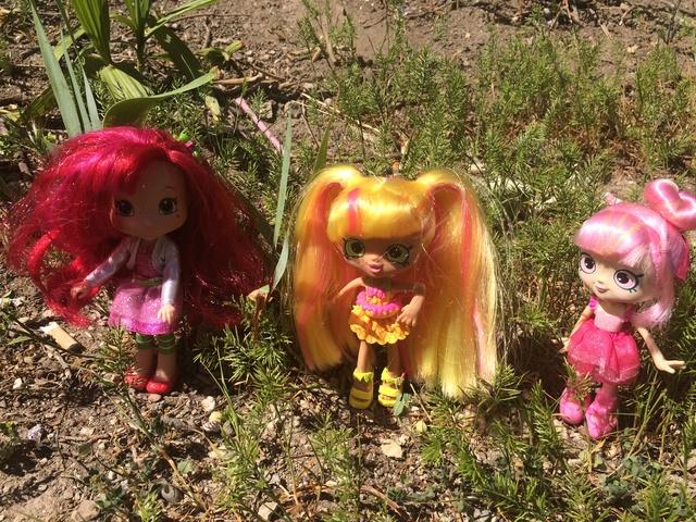 Dolls en Promenade  Img_3426