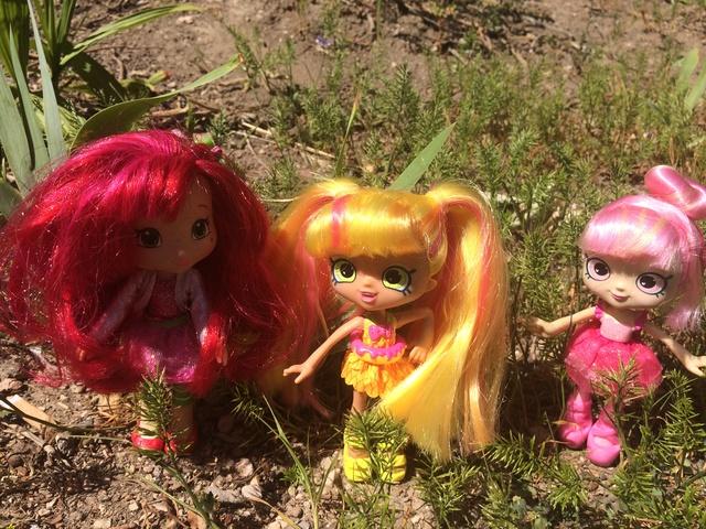 Dolls en Promenade  Img_3512