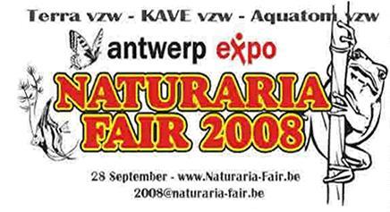 Anvers 28 Septembre 2008 Sans_t14