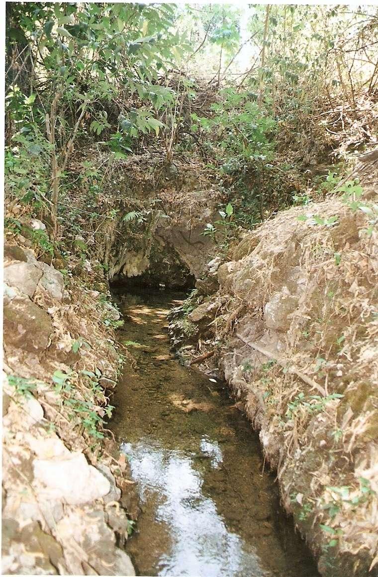 Busqueda en la hacienda de Zacapalco, Guerrero Escane12