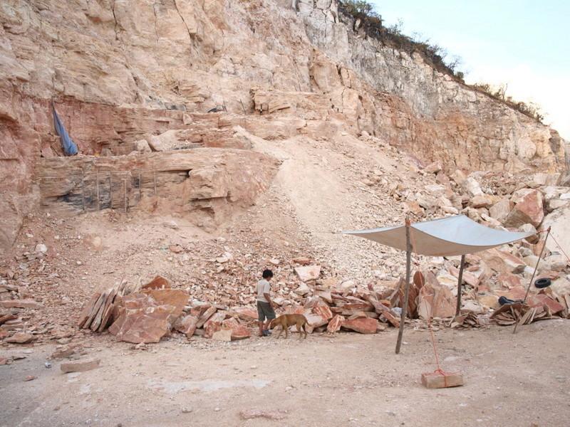 Dos prospecciones a la vez: fósiles y monedas Ol250710