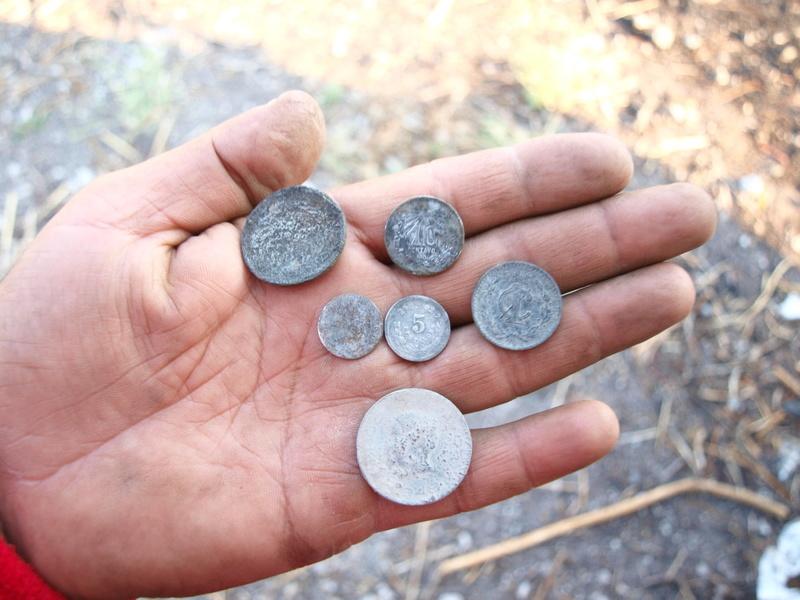 Dos prospecciones a la vez: fósiles y monedas Ol270710