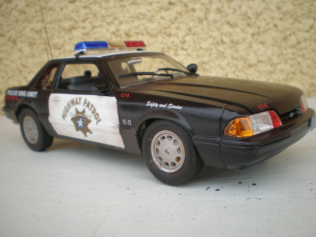 ford mustang police. P1301520