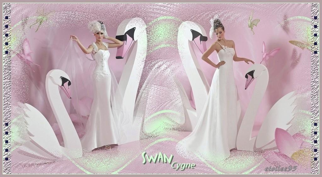 Swan(PFS) Image138