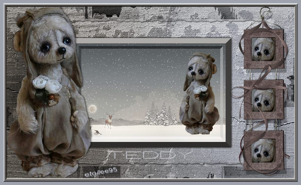Teddy(PFS) Image144