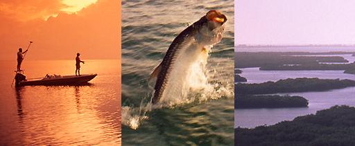 Bonefish & Tarpon Unlimited
