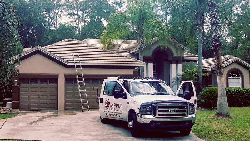 Cleaning Tampa Tile Roofs 6-15-2017 Cleane10