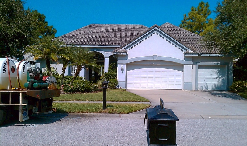 Tile Roof Cleaning In Tampa Florida Area Imag0311