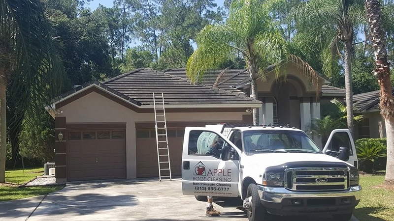Cleaning Tampa Tile Roofs 6-15-2017 Tile_r10