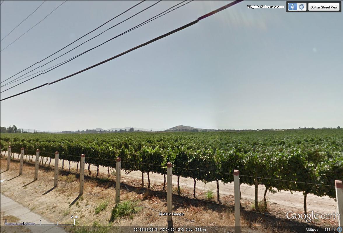 [Chili] - le vignoble chilien  Street20