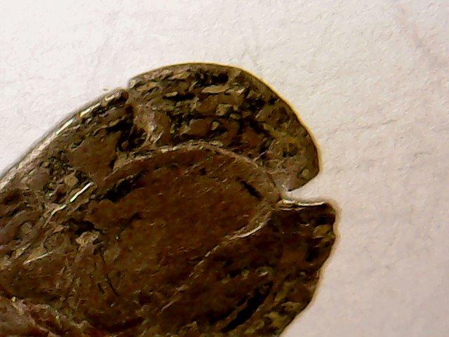 Charles VIII au Dauphin . 1483-1498 . Wed_ap25