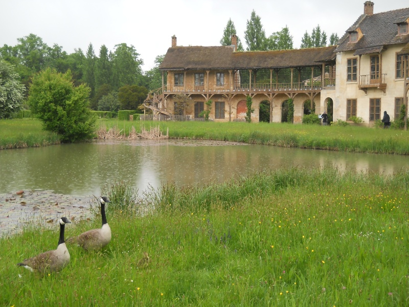 Nos photos du Hameau du Petit Trianon Carnav14
