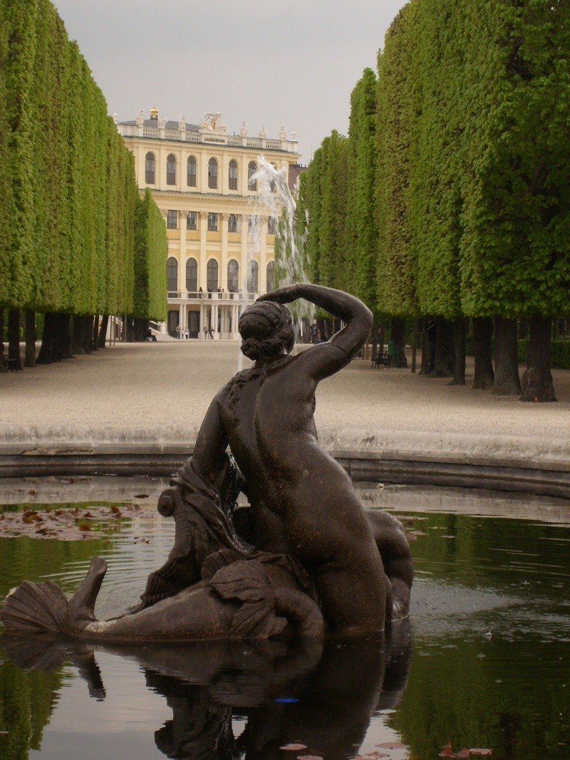 Le palais de Schönbrunn - Page 3 Vienn150