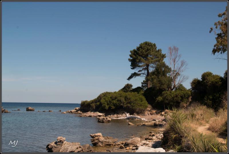 [Autres voyages/France] un bonjour de Corse - Page 2 Img_2610