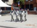(N°91)Photos de la cérémonie et du défilé du 14 juillet 2018 de Montauban dans le département du Tarn-et-Garonne (n°82).(Photos de Raphaël ALVAREZ) 12210
