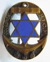 Ecussons , Insignes et Pucelles Régimentaires . 911