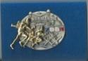 Les médailles et décorations associatives de Raphaël Insign10