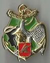 Les médailles et décorations associatives de Raphaël Insign11