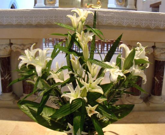 Réception mariage Stephi & Preto  - Page 2 Fleur017