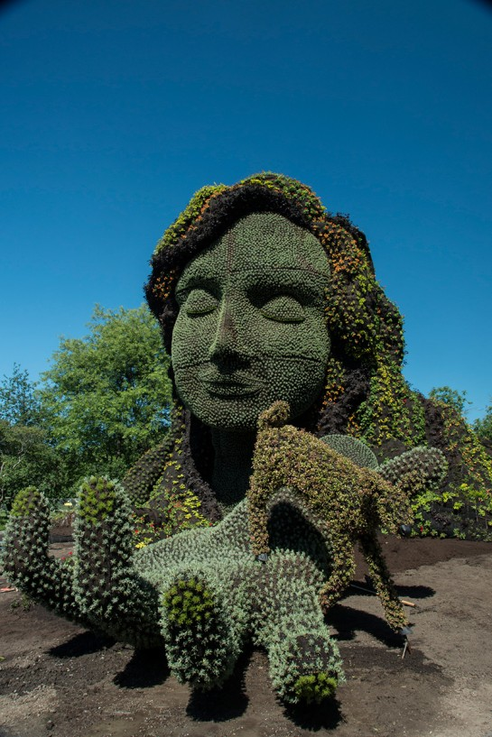 Sculptures végétales  Sculpt10