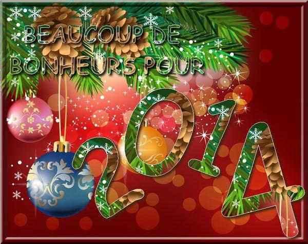 Bonne année 2014 - Page 2 2853ca10