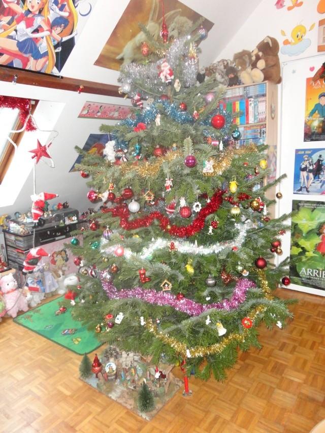 Votre décoration de Noel - Page 3 Dsc01711