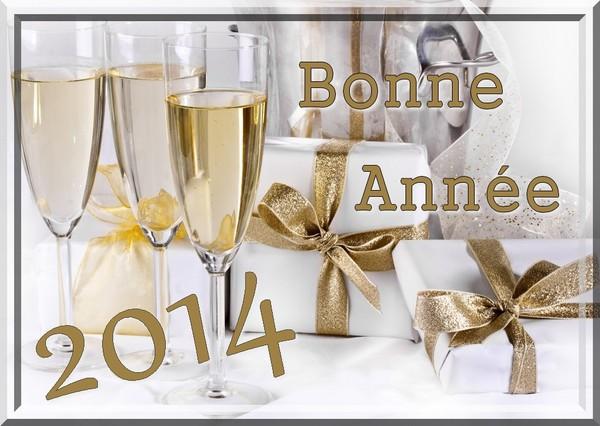 Bonne année 2014 - Page 2 Ff173010