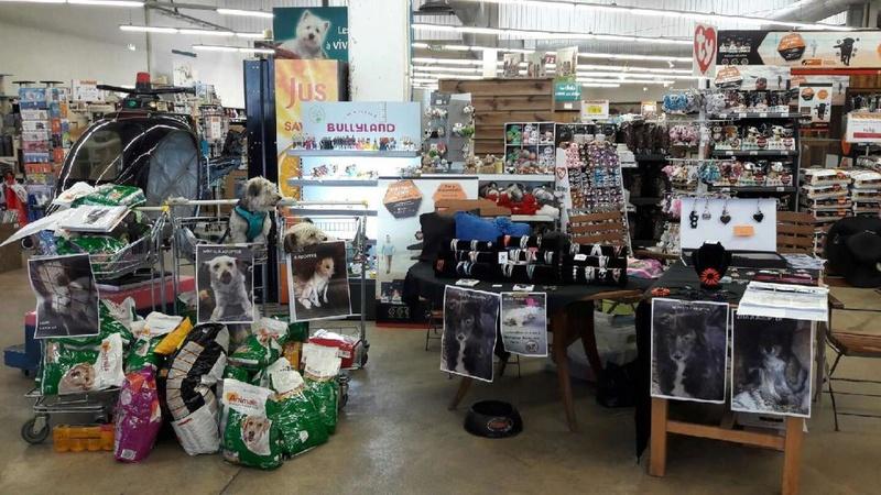 collecte de croquettes  à Herblay chez Animalis  WE du 17 et 18 juin Resize10