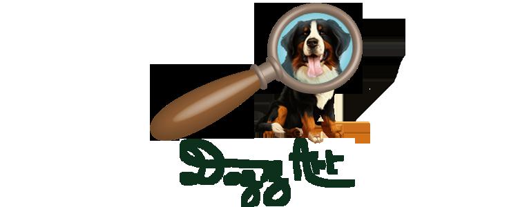 Dogz'Art