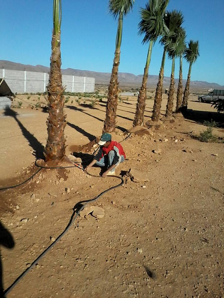 [Maroc Camp/Dernières nouvelles] Camping TINNOUBGA à Bouizakarne Img_0919