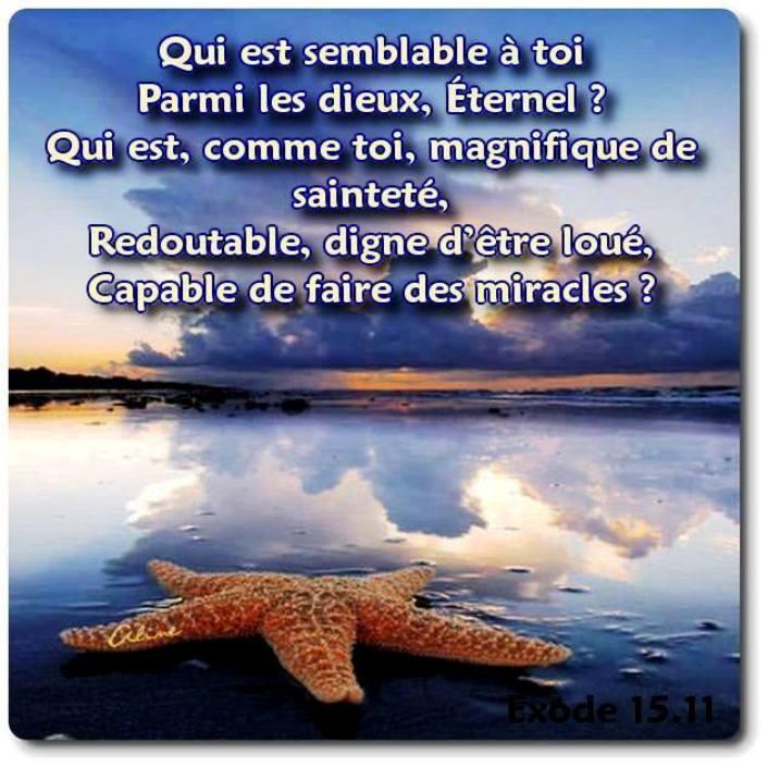 Exhortations journalières 10981310