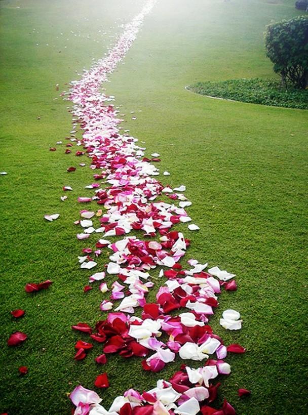 La nouvelle vie c'est « marcher dans l'Esprit » ou « selon l'Esprit » Chemin10