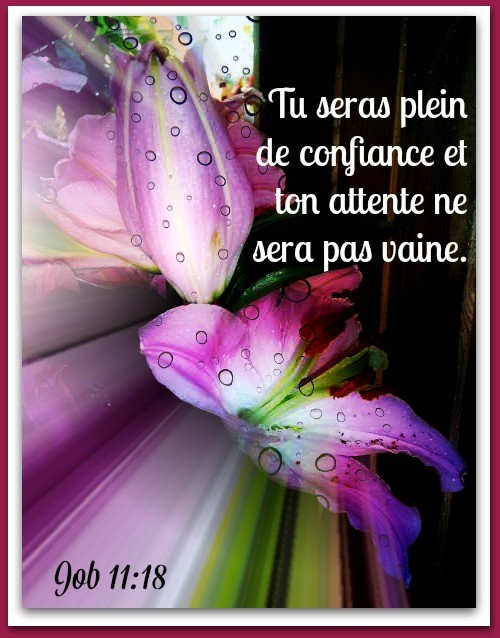 Exhortations journalières Confia11