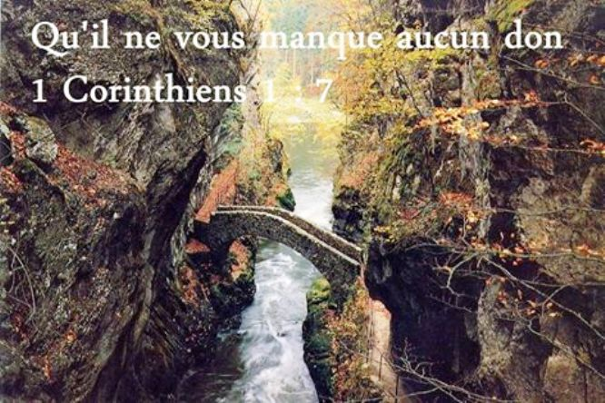 Exhortations journalières Don_1110