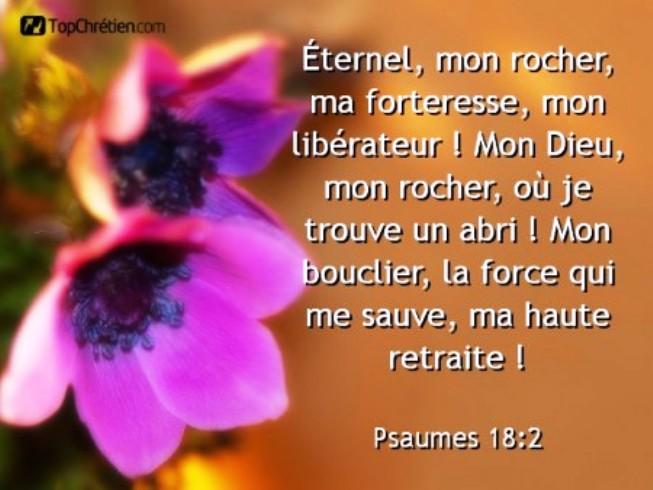 Exhortations journalières Forter10