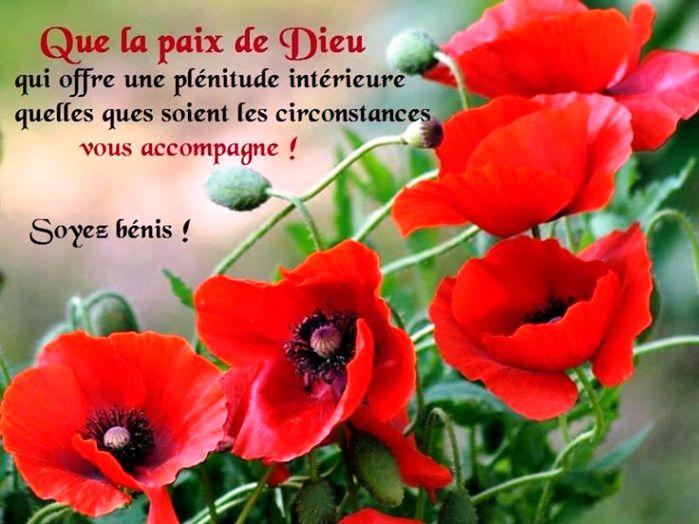 Exhortations journalières Paix_411