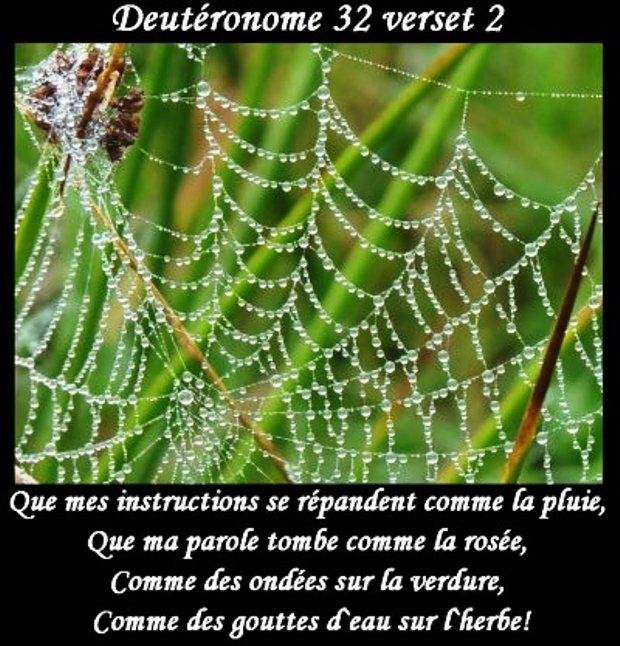 Exhortations journalières Parole11