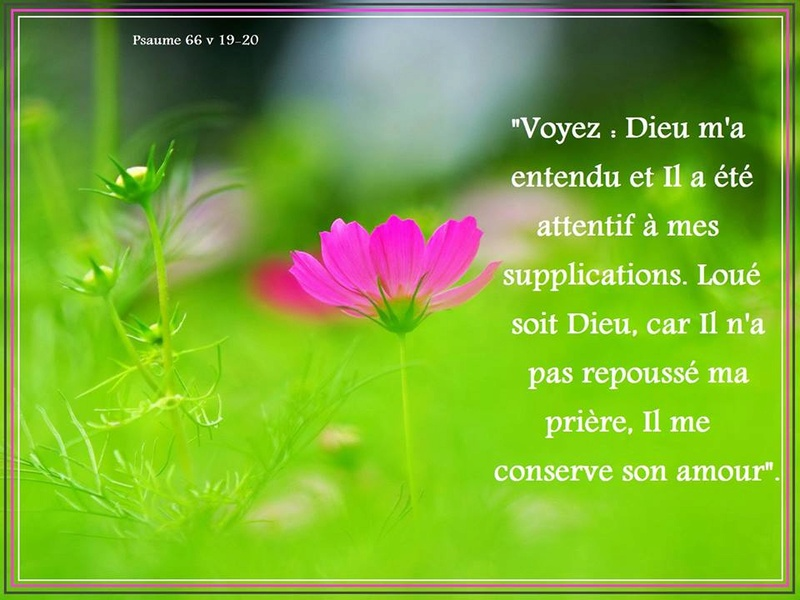 Exhortations journalières Priyre13