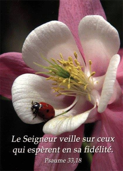 Exhortations journalières Protec10