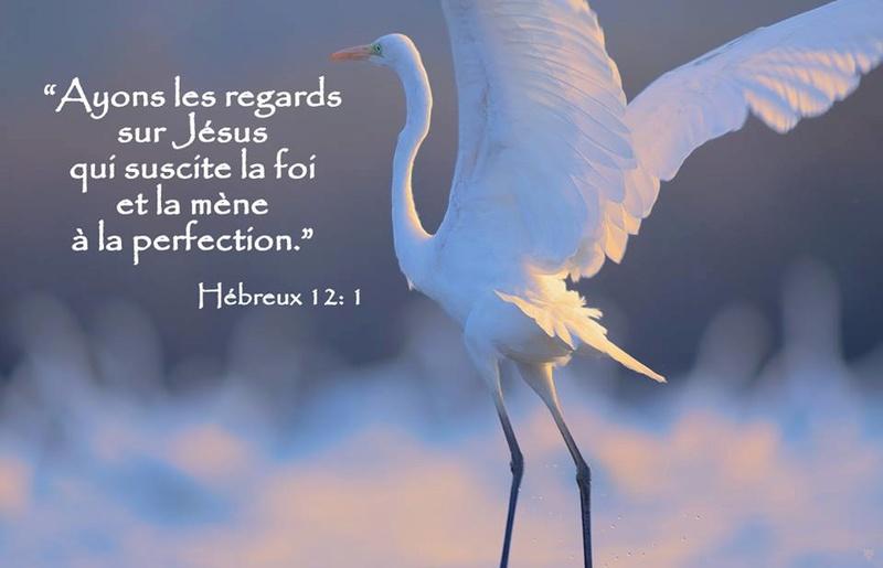 Exhortations journalières Regard11