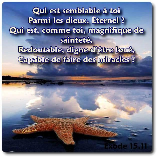 Exhortations journalières Seigne10