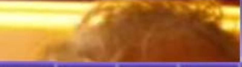 L' étoile de Rodger  du 9 février trouvée par Ajonc Captu227