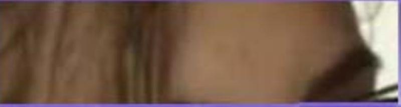 L' étoile de Rodger  du  4 mars trouvée par ajonc Captu244