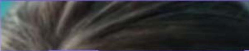 L' étoile de Rodger  du  24 mars trouvée par Ajonc Captu270