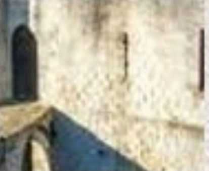 Château de Martine 12/05 trouvé par Ajonc Captu398